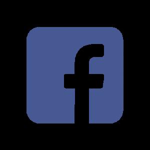 Bezoek Struikelstenen Termunten op Facebook